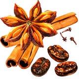 Granos de café asados frescos con la especia, los clavos, el canela, el anís de estrella entero y las semillas, aislados, ejemplo ilustración del vector
