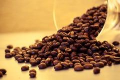 Granos de café calientes en el sol con la taza de cristal imagen de archivo libre de regalías