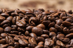 Granos de café Cierre para arriba Bokeh Imagen de archivo