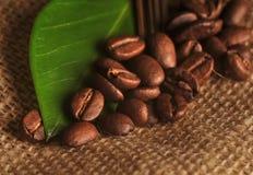 Granos de café con la hoja fotos de archivo libres de regalías