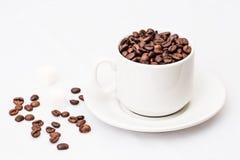 Granos de café con la taza de café blanca Fotografía de archivo libre de regalías