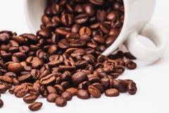 Granos de café con la taza de café blanca Foto de archivo libre de regalías