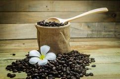Granos de café con las flores del Frangipani Imagen de archivo