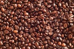 Granos de café de Brown Imágenes de archivo libres de regalías