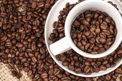 Granos de café de Brown en una taza Foto de archivo libre de regalías