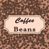 Granos de café del vector Diseño del café para la tienda o el café Imagen de archivo