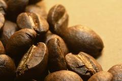 Granos de café deliciosos gastrónomos foto de archivo libre de regalías