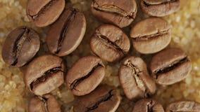 Granos de café en cristales del azúcar marrón almacen de video