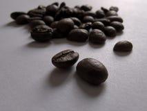Granos de café en el fondo blanco y la iluminación suave Foto de archivo