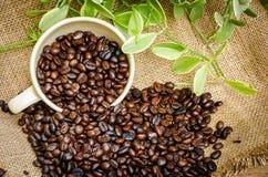 Granos de café en harpillera Foto de archivo