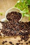 Granos de café en harpillera Imágenes de archivo libres de regalías
