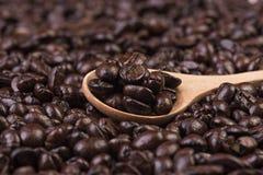 Granos de café en la cuchara de madera Fotos de archivo libres de regalías