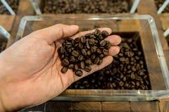 Granos de café en la mano y el envase de un hombre en el fondo Imágenes de archivo libres de regalías