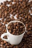 Granos de café en taza Fotografía de archivo libre de regalías
