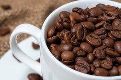 Granos de café en taza de café Cierre para arriba imagenes de archivo