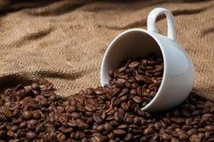 Granos de café en taza de café Cierre para arriba imágenes de archivo libres de regalías