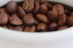 Granos de café en un bote blanco Imágenes de archivo libres de regalías