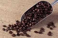 Granos de café en una cucharada Imágenes de archivo libres de regalías