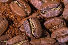 Granos de café enormes con el polvo del café Imágenes de archivo libres de regalías
