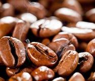 Granos de café fritos o asados macros Imagenes de archivo