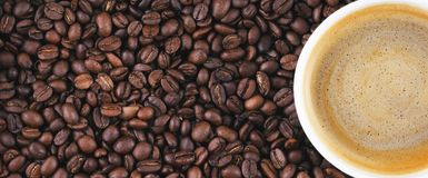 Granos de café fritos Taza de café en el fondo de los granos de café Foto de archivo