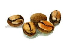 Granos de café de la acuarela aislados en blanco Imagen de archivo
