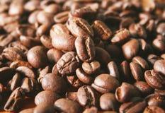 Granos de café macros Fotos de archivo