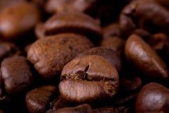 Granos de café macros Imágenes de archivo libres de regalías