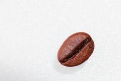Granos de café macros Fotografía de archivo libre de regalías