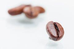 Granos de café macros Fotografía de archivo