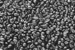 Granos de café monocromáticos Imágenes de archivo libres de regalías