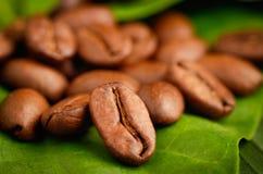 Granos de café orgánicos del comercio justo Imágenes de archivo libres de regalías