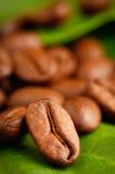 Granos de café orgánicos del comercio justo Foto de archivo