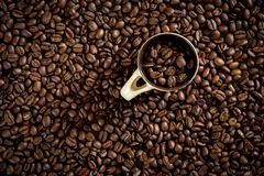 Granos de café para el café fresco fotografía de archivo