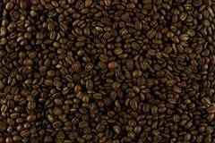 Granos de café presentados para la textura Imagen de archivo libre de regalías