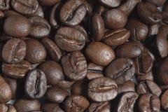 Granos de café, primer. Fotografía de archivo