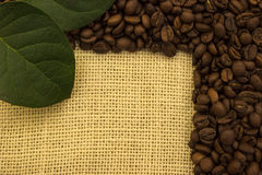 Granos de café que mienten en el despido imágenes de archivo libres de regalías