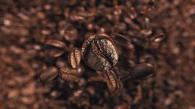 Granos de café que saltan en la cámara lenta estupenda 4K almacen de metraje de vídeo