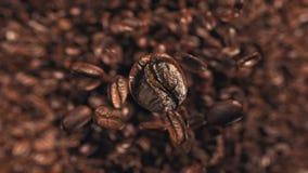 Granos de café que saltan en la cámara lenta estupenda 4K