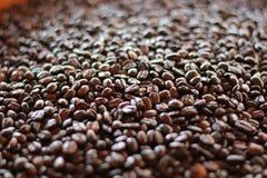 Granos de café recientemente asados imágenes de archivo libres de regalías