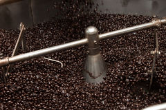 Granos de café recientemente asados en un tostador de café Imagen de archivo