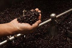 Granos de café recientemente asados en un tostador de café Fotografía de archivo