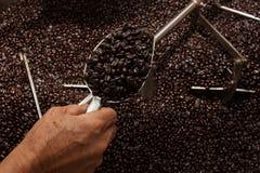 Granos de café recientemente asados en un tostador de café Imágenes de archivo libres de regalías