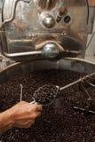 Granos de café recientemente asados en un tostador de café Foto de archivo libre de regalías