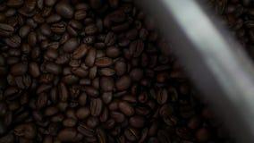 Granos de café recientemente asados que caen en un refrigerador de giro metrajes