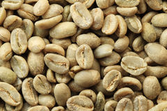 Granos de café verdes Imagen de archivo