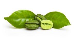 Granos de café verdes con la hoja Imagenes de archivo