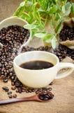 Granos de café y café de Americano Imágenes de archivo libres de regalías