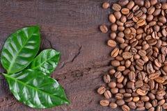 Granos de café y hojas verdes de la planta del café en un escritorio de madera viejo Opinión superior los granos de café con un e Fotos de archivo