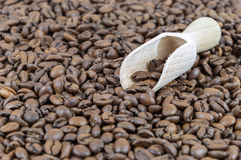 Granos de café y pala de madera imagen de archivo libre de regalías